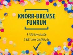Knorr-Bremse Fékrendszerek